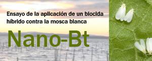 NANO-Bt